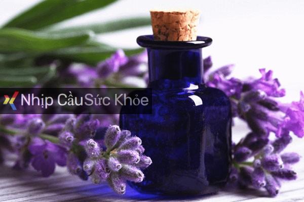 Tinh dầu oải hương Lavender là gì?