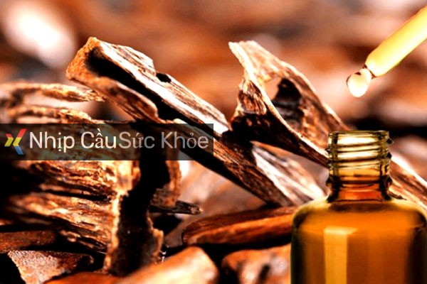 Cách làm tinh dầu trầm hương