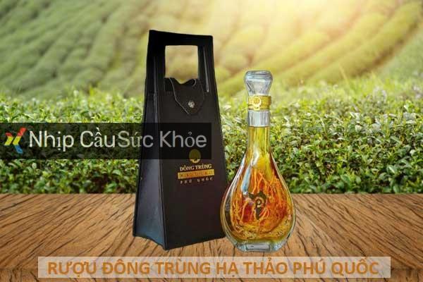 Rượu đông trùng hạ thảo Phú Quốc